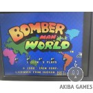 Bomberman World (Arcade Game)